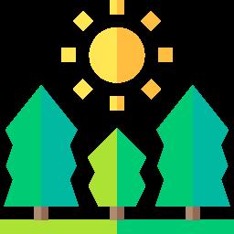 Bois issus de forêt gérée durablement PEFC